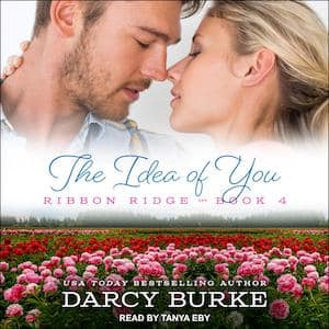 The Idea Of You audiobook by Darcy Burke